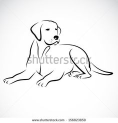 Vector image of an dog labrador on white background - stock vector