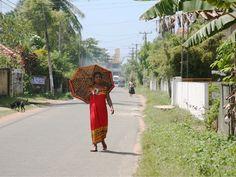 TRANSIT : スリランカ:宝物を探して - Travelog