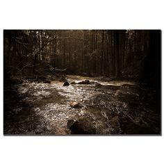 Philippe Sainte-Laudy 'The River' Canvas Art | Overstock.com