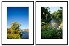 0071, Set of Two(2) River Landscape with Yellow Flowers,Fall Color,Trees,Wall Art,Americana Picture,Wall Art,Art,Fine Art Photography Tree Wall Art, Yellow Flowers, Picture Wall, Fine Art Photography, Art Art, Trees, River, Landscape, Fall