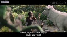 Üzenet a jövőből Horses, Children, Youtube, Animals, Young Children, Boys, Animales, Animaux, Horse