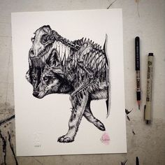 animal-skull-drawings-paul-jackson-16