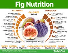 Figs are not only highly nutritious fruit, but they also benefit the digestive system and are considered a super fruit for immunity. Keep reading to learn more about figs benefits and properties. Fig Recipes, Healthy Recipes, Figs Benefits, Food Facts, Health And Nutrition, Health Tips, Fig Nutrition Facts, Vegetable Nutrition, Vitamins And Minerals