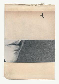 """foxesinbreeches: """" Loin (46) by Katrien de Blauwer Also """""""