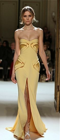 Georges Hobeika haute couture...I want
