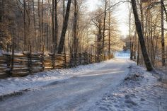 Äntligen lite vinter! Tog denna Valla vid gamla Linköping. Jag hoppas kunna ta fler vinterbilder i helgen.. #linköping #lkpg #jonas_fotograf #fotograf #sweden_photolovers #ignature #igsweden #ig_sweden #ig_masterpiece #igersworldwide #ilovesweden #nature #naturephotography #ig_captures #valla #gamlalinkoping #meralink #natur #naturfoto #loves_sweden #sweden #gloryofsweden