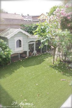 24 Homes: Ons kippenhok Backyard Chicken Coops, Chickens Backyard, House Rabbit, Hen House, City Farm, Creature Comforts, Go Outside, Homesteading, Sweet Home