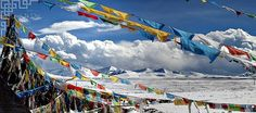 Tibetan Budhist prayer flags in Himachal Pradesh India.