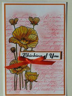 fond stampin up, tampon hero arts poppies, sentiment hampton arts