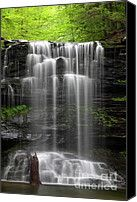 Weeping Wilderness Waterfall Photograph by John Stephens - Weeping Wilderness Waterfall Fine Art Prints and Posters for Sale
