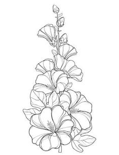 Illustration of Bunch with outline Alcea rosea or Hollyhock flower, stem, bud and leaf isolated on white background. Floral elements in contour style with ornate Hollyhock for summer design and coloring book. vector art, clipart and stock vectors. Hollyhocks Flowers, Gladiolus Flower, Flowers Garden, Pencil Drawings Of Flowers, Art Drawings, Body Art Photography, Nature Sketch, Floral Drawing, Art Sketchbook