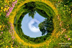 Learn how to convert a regular picture into a panoramic picture by wrapping it in a circle using Adobe Photoshop.