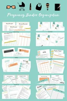 Pregnancy organization made easy. Pregnancy planner, organizer and journal.