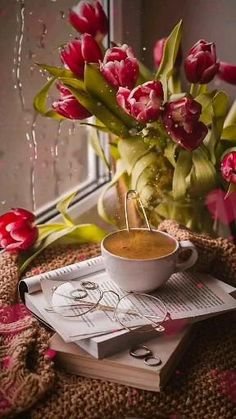 Me segue no YouTube Entre no site Tag #video #imagem #instagram #story Good Morning Gift, Good Morning Coffee Gif, Good Morning Beautiful Flowers, Good Morning Images Flowers, Good Morning Roses, Good Morning Beautiful Quotes, Good Morning Picture, Good Morning Greetings, Morning Pictures