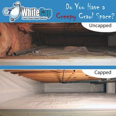 WhiteCap™ Crawl Space Vapor Barrier - Our vapor barrier is a thick liner with a mold resistance inhibitor built-in. This liner is used on dirt crawl spaces and on the walls. The liner completely stops any moisture or vapors from creeping into a hom