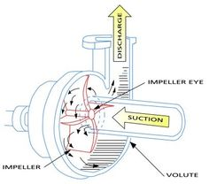 What justifies the significance of impellers in centrifugal pumps Marine Engineering, Chemical Engineering, Mechanical Engineering, Electrical Engineering, Diy Water Pump, Water Pump Motor, Water Turbine, Centrifugal Pump, Alternative Energy