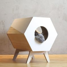 Cat Bed Design Cat Furniture Modern Cat House Black and Modern Cat Furniture, Pet Furniture, Furniture Design, Scandinavian Cat Furniture, Modern Cat Beds, Cat Lover Gifts, Cat Gifts, Cat Lovers, Gatos Cat