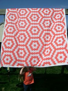 Hexagonal quilt - English Paper Pieced?- would be fun in two similar colors like black and gray.