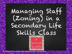 A Special Sparkle: Managing Staff (Zoning) in a Secondary Life Skills Class