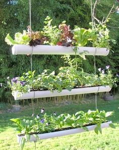 PVC pipe garden ideas - gutters could work too. Perfect if you're short of space! #homesfornature #diy