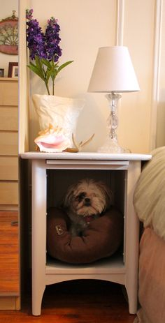 Dog Bed Nightstand...so, NO, he's not sleeping in the bed with us....