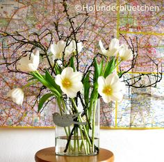 Holunderbluetchen® - Holly Flower®: Friday-Flowerday #1
