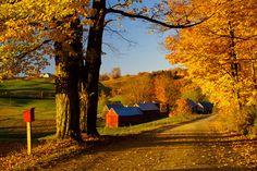 New England Fall Coach Tours