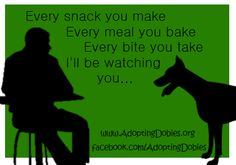 If you have a doberman, you know this is true
