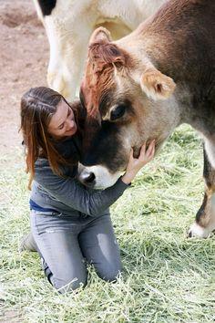 Kind Field Trip: The Farm Sanctuary   The Kind Life #farmsanctuary #animals #animalrescue