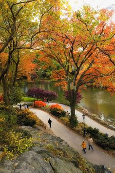 The Ultimate NYC Fall Bucket List