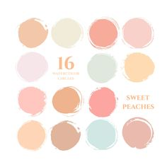This branding kit includes 16 watercolor circles in sweet peaches shades including pastel peach, orange, blush pinks, neutrals. The clip art set is perfect for Pastel Colour Palette, Colour Pallette, Colour Schemes, Pastel Colors, Color Combos, Peach Pallete, Colours, Peach Paint Colors, Paint Color Palettes