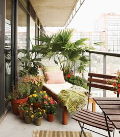 Small Balcony Design, Small Balcony Garden, Small Balcony Decor, Porch And Balcony, Small Patio, Balcony Ideas, Balcony Plants, Patio Plants, French Balcony