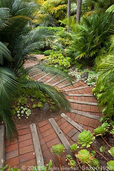 Pathways through gardens can give great opportunity to compose with leading lines.