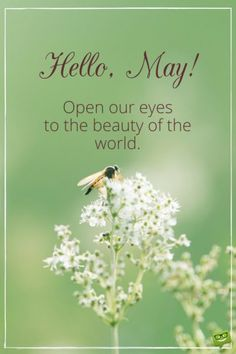 Hello, May! Open our eyes to the beauty of the world.