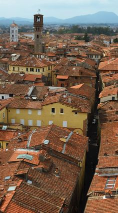 Lucca - Italy #lucca #medievalpassage #medieval #passage #italy #italia #toscana #tuscany #cityview