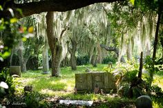 Merritt Island Florida cemetery | Georgiana Cemetery (Crooked Mile Cemetery) Merritt Island, Florida ...