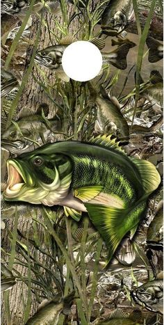 Bass Fishing Pictures, American Flag Wallpaper, Cornhole Board Wraps, Cornhole Designs, Fish Artwork, Circular Saw Blades, Fish Drawings, Wildlife Paintings, Gone Fishing