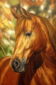 carol cavalaris - Google Search