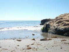 Pacific Coast Shore