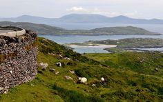 Ring of Kerry - Ireland