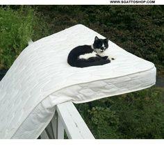 Adoro uscire sul balcone a rilassarmi un po'!