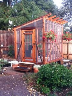 Aviary built for adopter's rescued pigeons but could house small parrots, budgerigars etc.