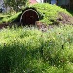 vår jordkällare som ser ut som en hobbithåla