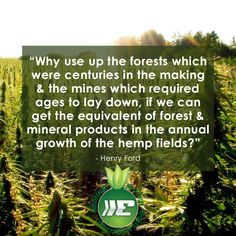 #Hemp for sustainability!