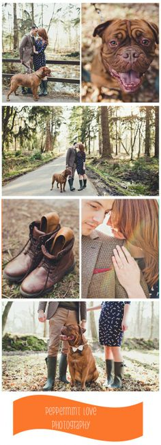 engagement-photos-with-dog