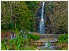 Waterfall Gully In Late Winter - Adelaide, South Australia