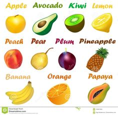 Set Of Fruits With Names On A White Background Stock Vector - Image: 100937852