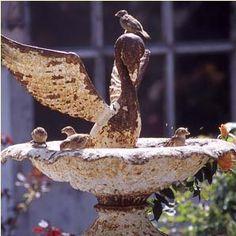 bird bath I want this one