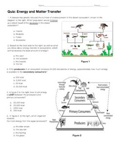 six levels of ecology ecology review worksheet 1 answers recipes to cook pinterest ecolog a. Black Bedroom Furniture Sets. Home Design Ideas