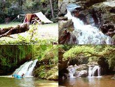 Camping Stove - Thinking Of Having A Camping Trip? Camping In Maine, Camping Glamping, Camping With Kids, Best Camping Stove, Coleman Camping Stove, Camping World, Camping Life, Corsica, Santa Cruz Camping
